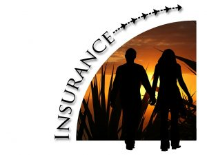 Spanish to English Insurance Translations